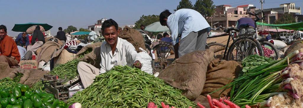 Farmers Can Sell Directly, Interstate And E-Trade